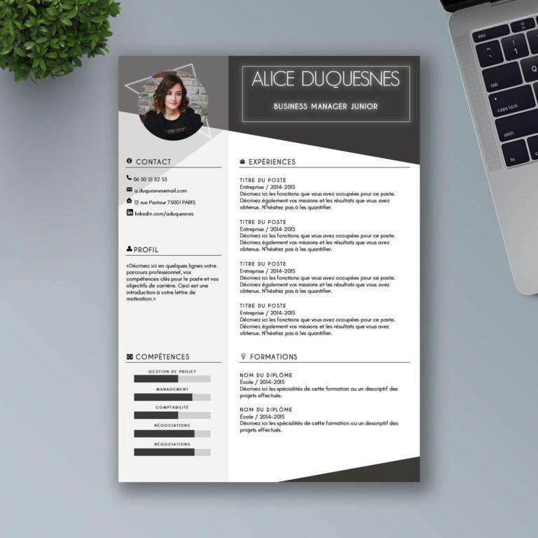 présentation CV freelance, consultant indépendant
